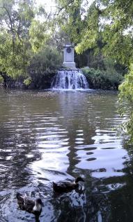 lake in park in madrid