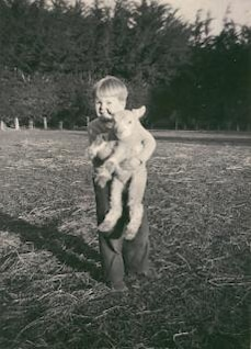 Lamb at Taitapu
