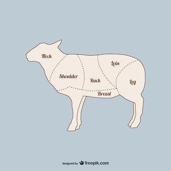 Lamb primal cuts