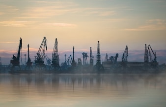 Landscape of sea with fog and cranes