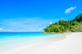 Landscape summer paradise travel coast