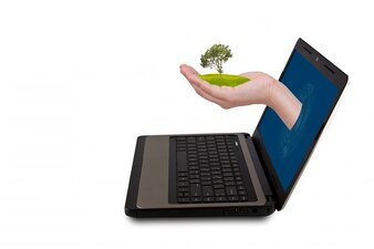 Laptop screen leaving a hand with a green sprout
