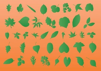 Leaf Vector Silhouettes