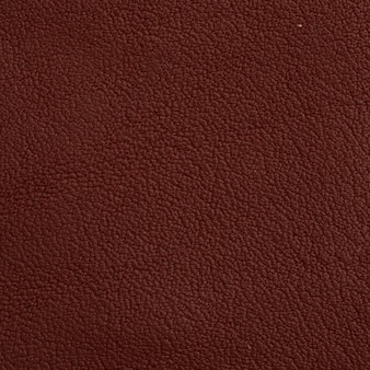 Leather Vectors Photos And Psd Files Free Download