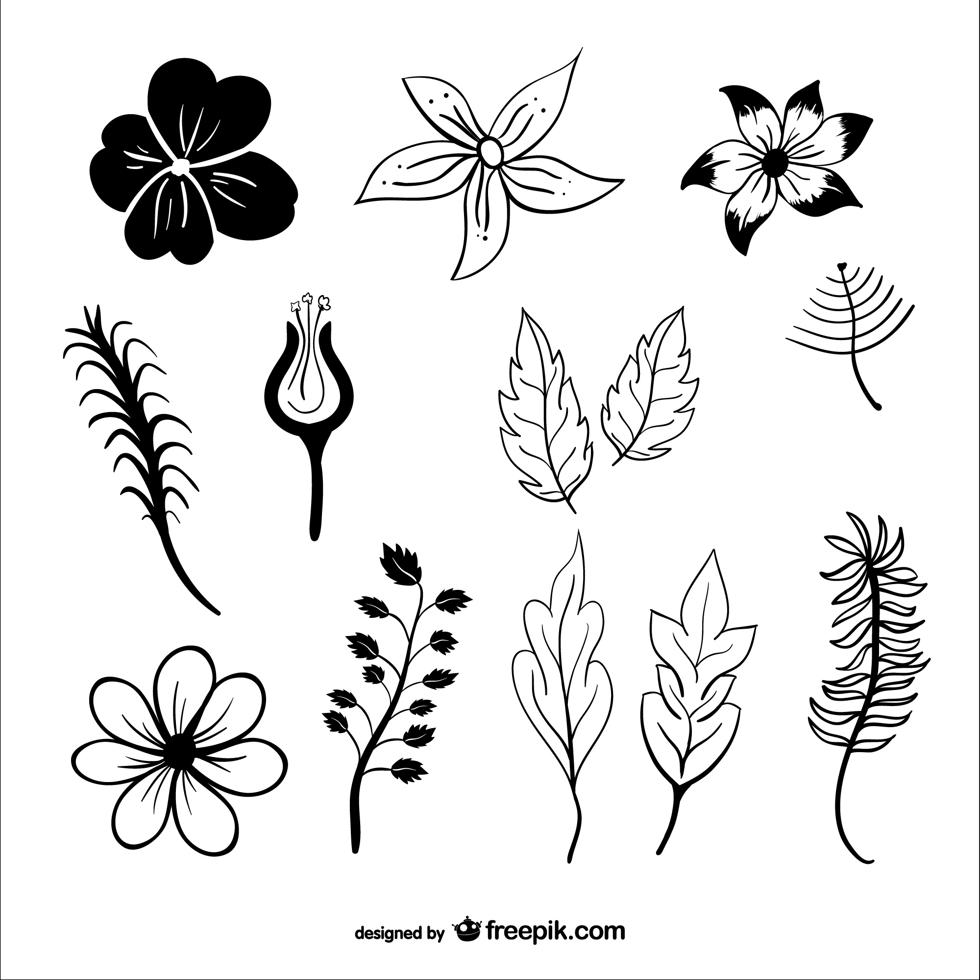 Leaves and flowers vector silhouettes
