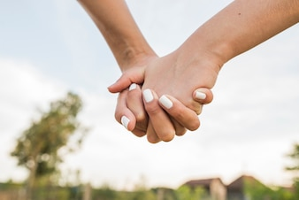 LGBT Lesbian Couple Moments Happiness. Lesbian Couple Holding Hands