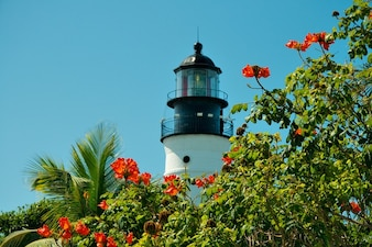 Lighthouse florida tropics key nature west