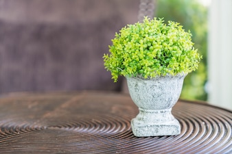 Little Green tree pots decoration on wooden table