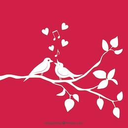 Loving birds on branch