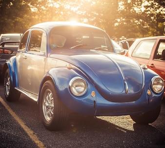 Low transport bright car motor