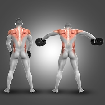 Man lifting weights and exercising shoulders and back