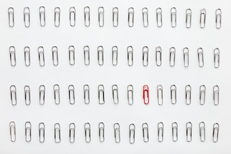 Metal paperclips in rows, one red different from the others