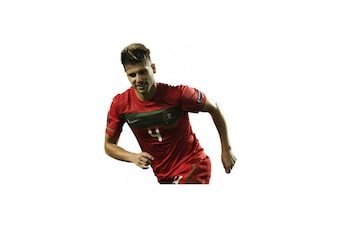 Miguel Veloso , Portugal National team