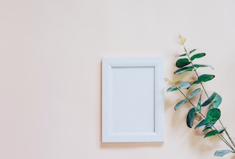 Mockup of blank photo frame with green plant on yellow background, simple and minimal style