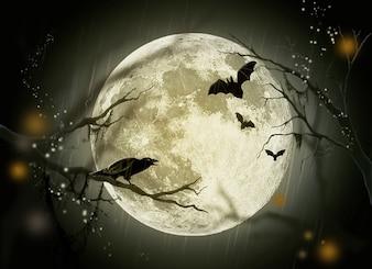 Moon tale crow holidays fairy mystery halloween