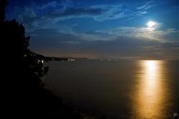 moonlight  dark