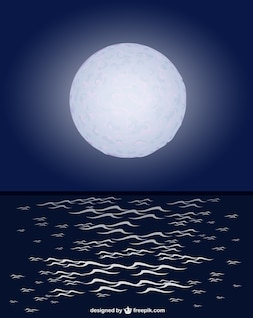 Moonlight ocean vector