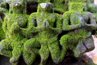 Mossy stone sculptures