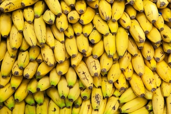 Mountain yellow bananas