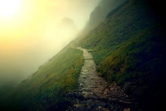 山の風景。