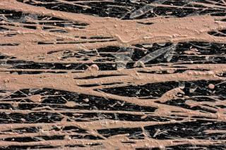 Mud splatters texture  close up