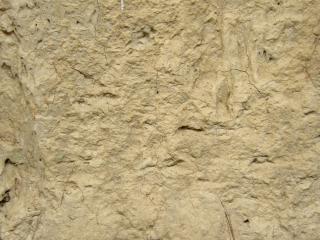 Muddy wall texture  grunge