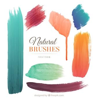 Natural brushes