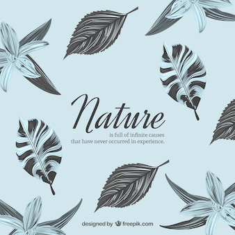 Nature background with flowers and leaves
