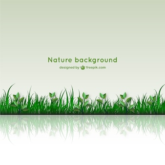 Nature background with glass