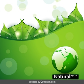 Nature background with globe and leaves