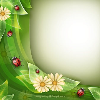 Nature background with lady bugs