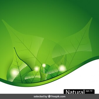 Nature background with wave