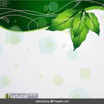 Nature dotted background