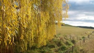 ニュージーランドの冬のニュージーランドの風景、