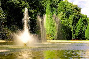 Nice fountain with leafy trees background