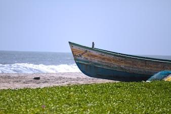 Old boat on beach shore