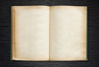 Old book open on dark wood background