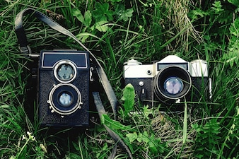 Old cameras on the grass