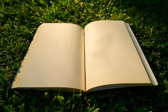Open blank book on the lawn