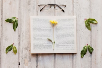 Open book, leaves and glasses