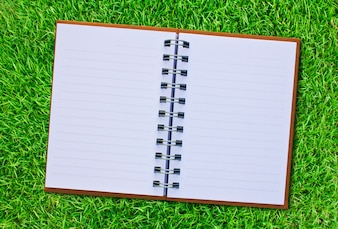 Open book on a background with grass