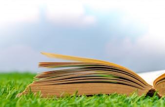 芝生の上で開いた本