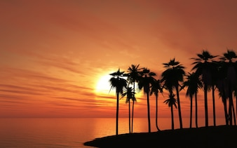Palm tree in a beach at sunset