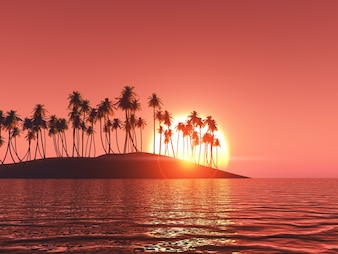 Palm tree in a isle