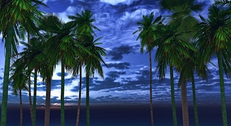 Palm trees in the night