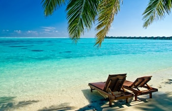Paradisiacal beach landscape