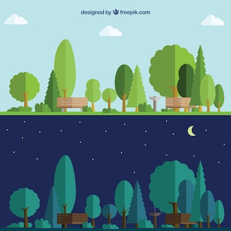 Park day and night