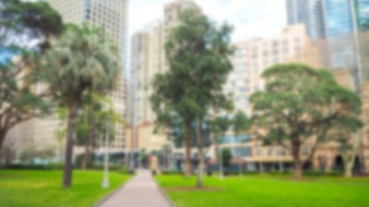 Park with out-of-focus buildings
