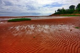 pei beach scenery   hdr  canadian