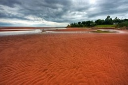 pei beach scenery   hdr  coast